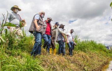 Los niños, principales protagonistas de jornadas de arborización en Calicanto y Los Naranjos en Popayán
