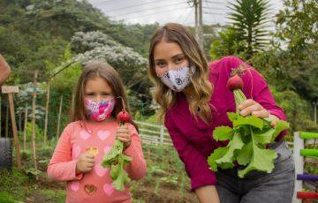 Alcaldía de Manizales crea el proyecto agricultura urbana para que las personas cultiven en sus casa alimentos que puedan consumir