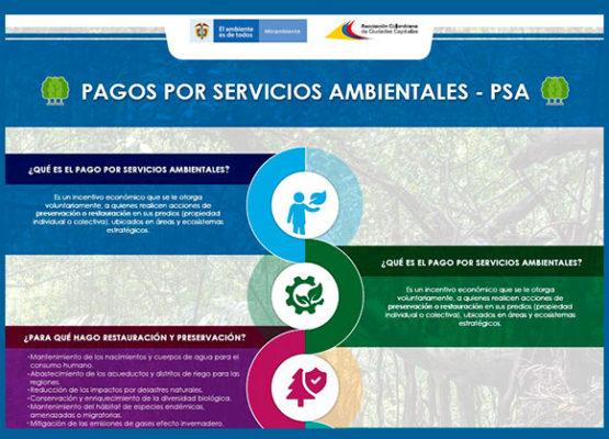 Los pagos por servicios ambientales (PSA)