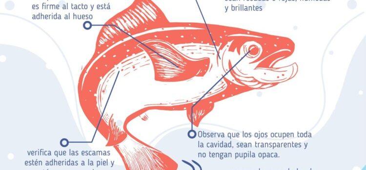 Alcaldía de Tunja hace recomendaciones sobre el consumo de pescado