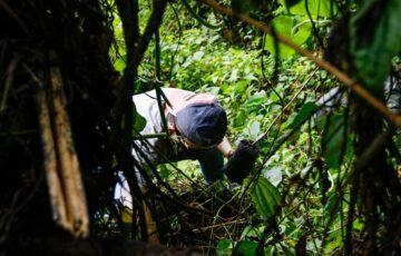 Alcaldía de Manizales promueve la conciencia de protección, conservación y restauración de los bosques